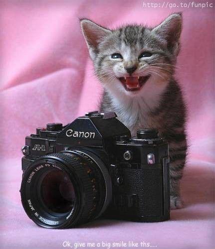 anniversaire photographie humour